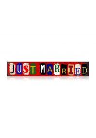 """Табличка на авто """"just married"""""""