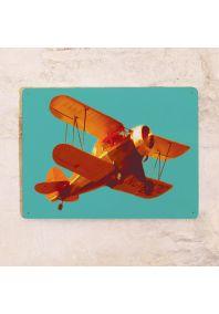 Прикольная табличка  Самолет в небе