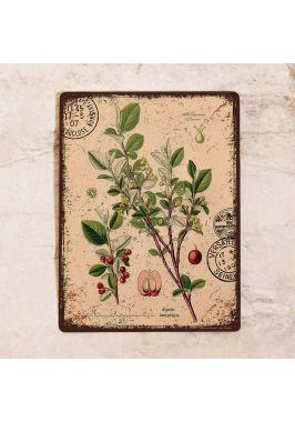 Декоративная табличка Кизил