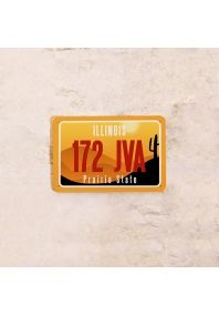 Автомобильный номер Иллинойс