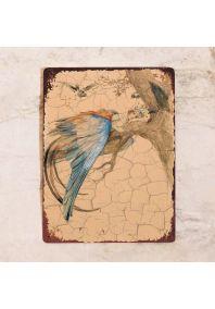 Девушка-птица