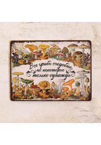 Жестяная табличка Все грибы съедобны