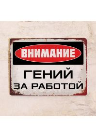 Табличка на дверь Гений за работой