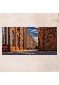 Brick Walls 40х80см