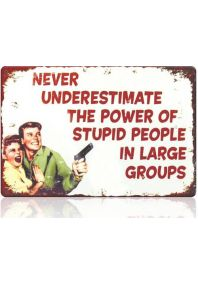 Power of stupid people