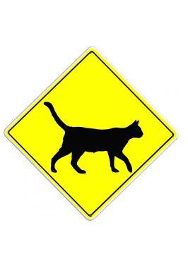 Осторожно! Кошка
