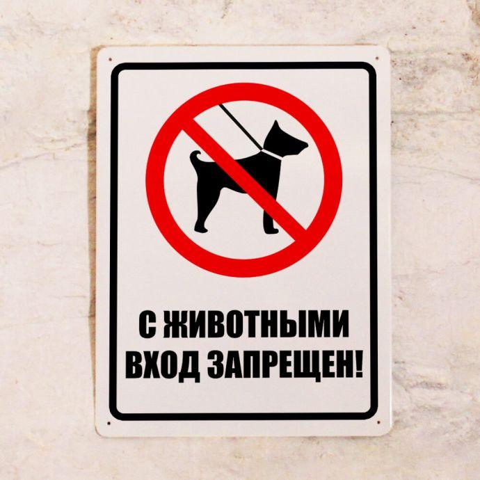 Вход с животными запрещен картинки с надписями