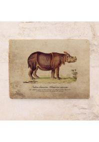 Винтажная табличка Носорог