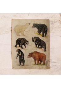 Винтажная табличка Медведи