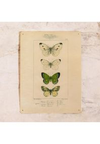 Коллаж Бабочки на металле