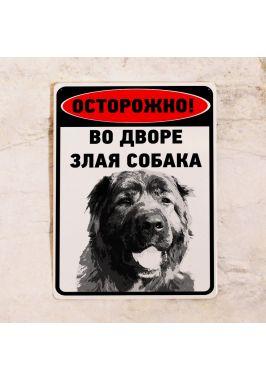 Металлическая табличка Во дворе злая собака