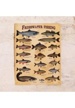 Металлический постер Пресноводные рыбы