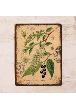 Декоративная табличка Черёмуха