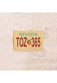Автомобильный номер Невада