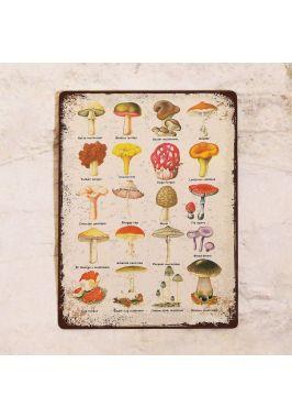 Декоративная табличка Грибы