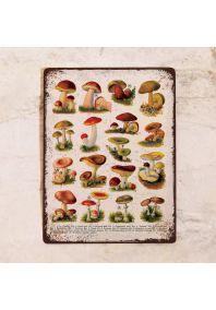 Табличка Все грибы 1