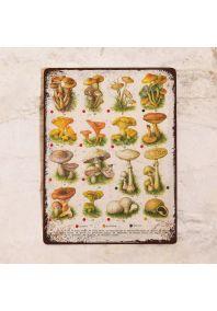 Табличка Все грибы 3