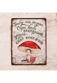 Декоративная табличка Грибы разные!