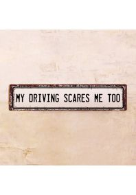 Табличка My driving scares me too