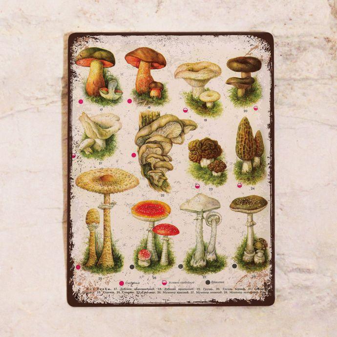 Табличка для грибника