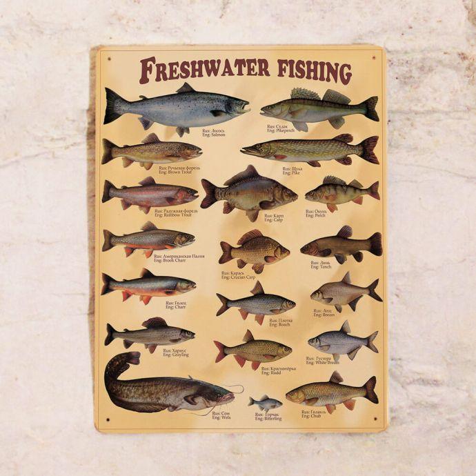 Оригинальные подарки дачникам рыбаку