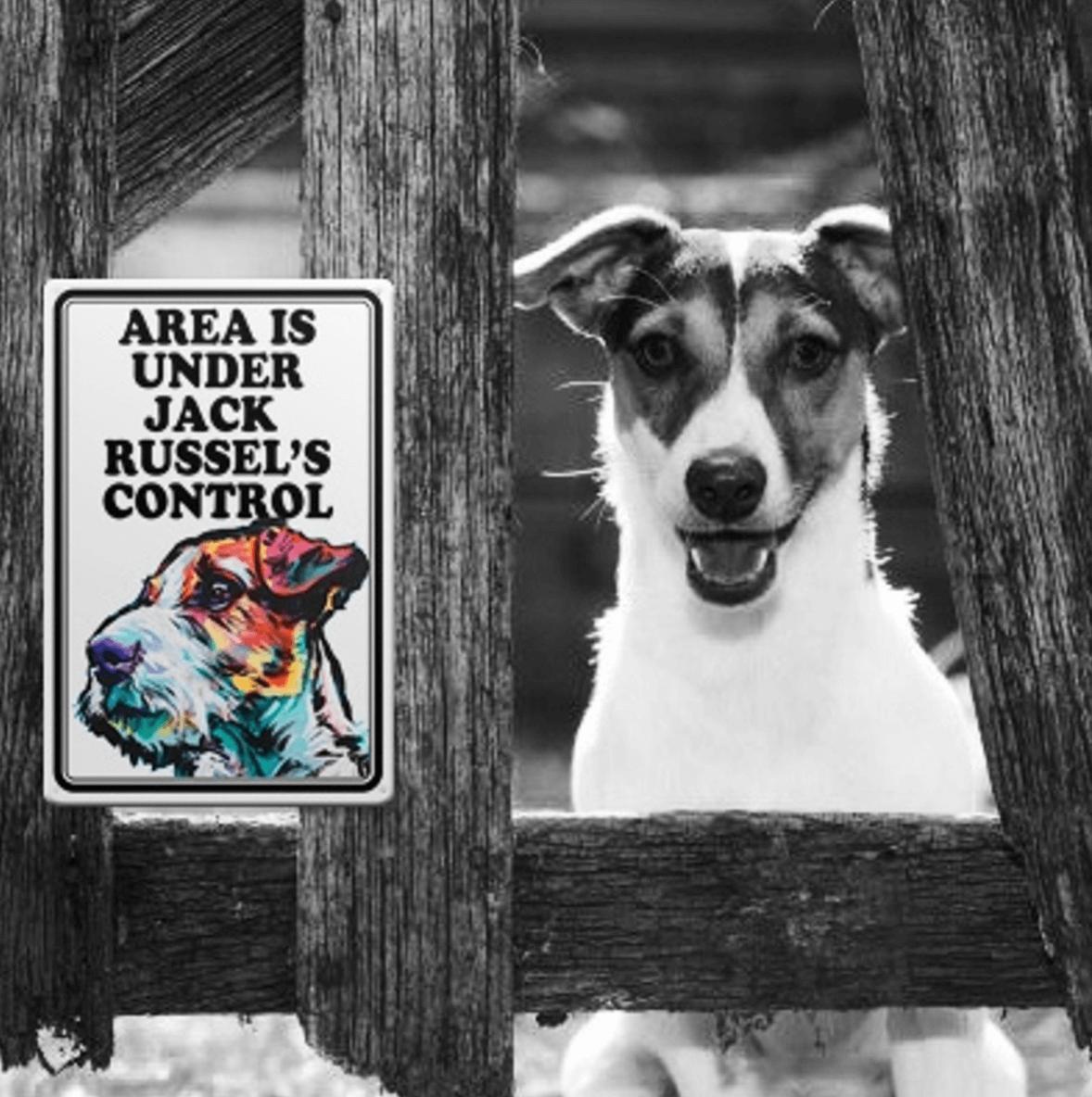 Таблиичка злая собака джек рассел